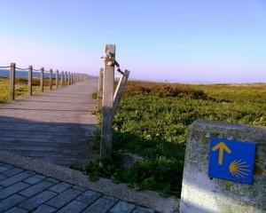Caminho da Costa / Coastal Way